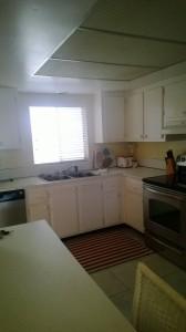 sv-206-south-kitchen