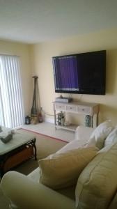 sv-206-south-living-room-tv